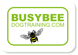Busy Bee Dog Training Isle of Man - Home Page